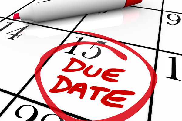 Tax lodgement and payment dates